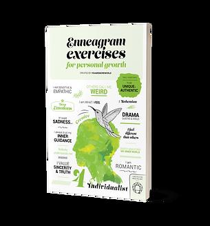 Enneagram exercises book Individualist