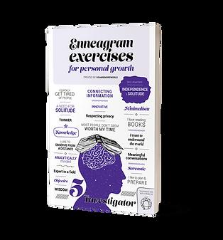 Enneagram exercises book Investigator