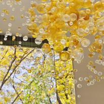 Bubbles in Space - Jitka Skuhrava Glass.