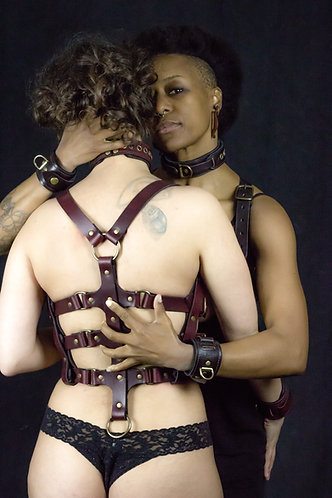 Wolfram Harness (Dark Brown)