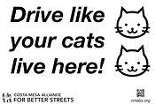 SSP - cat sign 2.jpg
