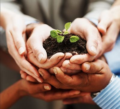 Hands holding soilPlant.PNG
