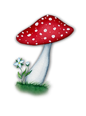 mushroom-logo-web.png