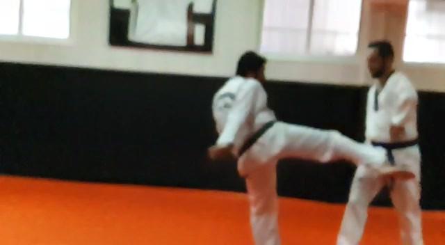 Taekwondo Park Madrid 1