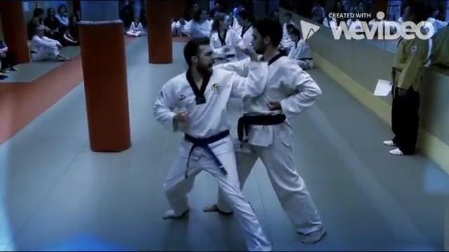 Escuela de Taekwondo Park Madrid.mp4