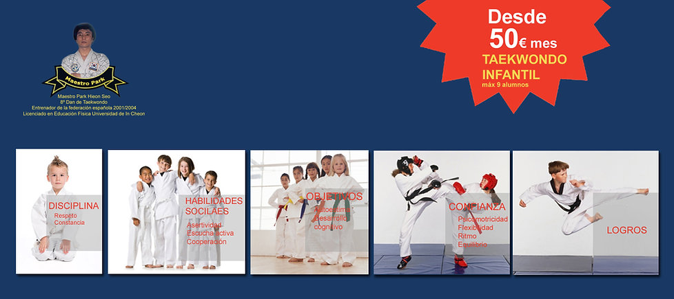 taekwondo infantil madrid, artes marciales en madrid