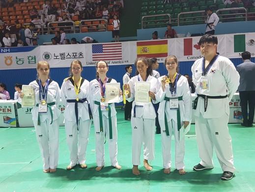 Taekwondo Park Corea 2018(4).jpg