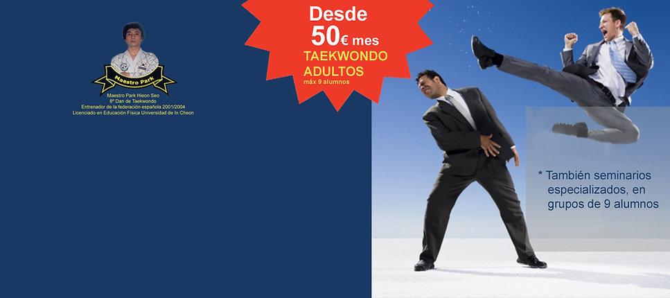 taekwondo adultos madrid, artes marciales en madrid