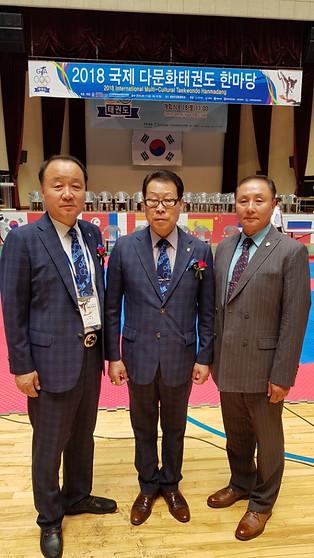 Taekwondo Park en Korea 2018.jpg