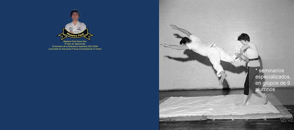 taekwondo madrid, artes marciales en madrid