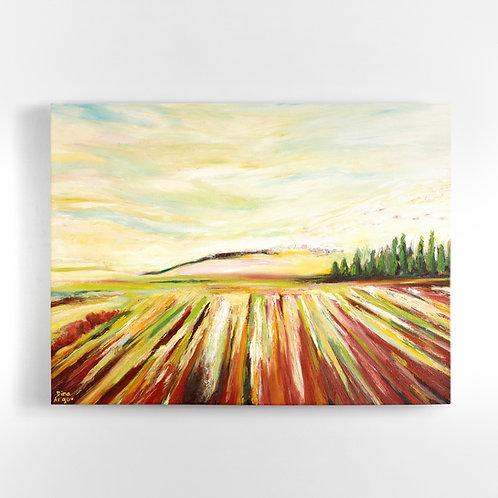 Bright Fields