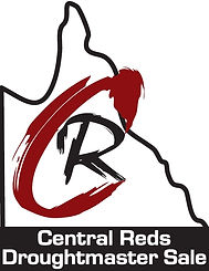 Central Reds bull sale logo