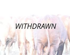 withdrawn.jpg