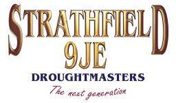 strathfield 9je logo.jpg