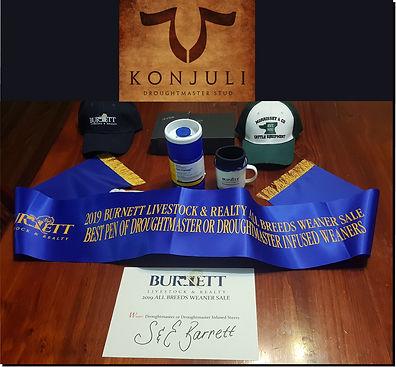 picture with logo konjuli.jpg