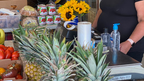 Amelia Iuliano's Local Produce Solution