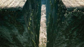 The Maze Runner: A Synopsis and Review