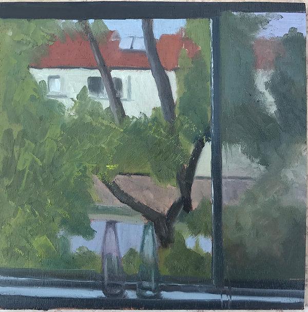 מחלון הסטודיו 20-20.JPG