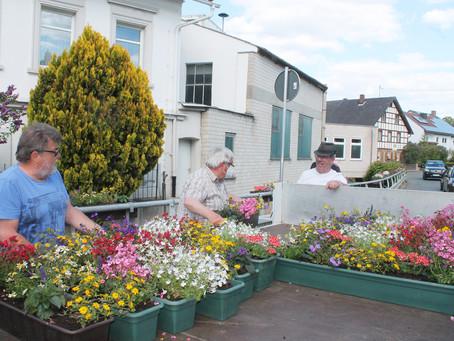 Blumenkästen für den Gartenbauverein Schwarzach Schmeilsdorf e. V.