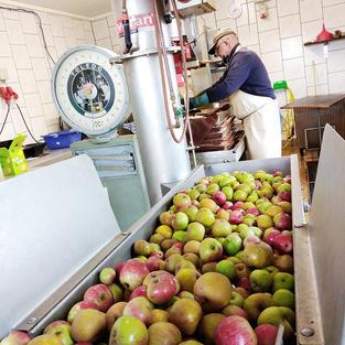 Äpfel marsch!