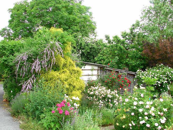 Im Garten (7).jpg