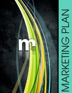 Consulting | Marketing Plan