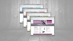 website-design-branding