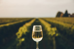 family-of-12-wine-glass_edited.jpg