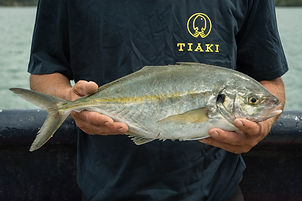 Trevally%20two%20hands_edited.jpg