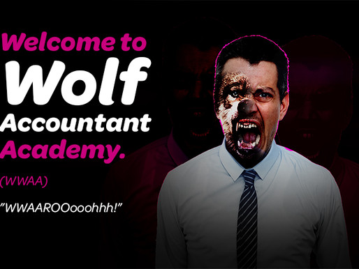 Welcome to Wolf Accountant Academy
