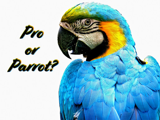 Pro or Parrot?