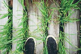Talk 3- enjoy the grass.jpg
