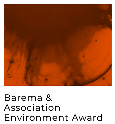 Barema & Association Environment Award