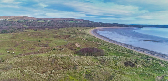 Oxwich by air