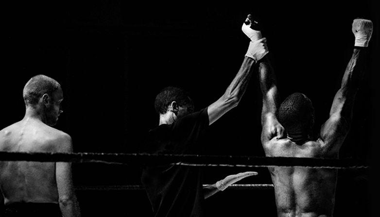 Boxer, boxing, winner
