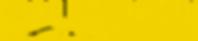 RaceMountain Logo Yellow.png