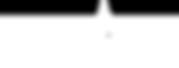rochdale bid logo white.png