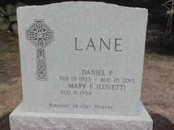 Lane for Website