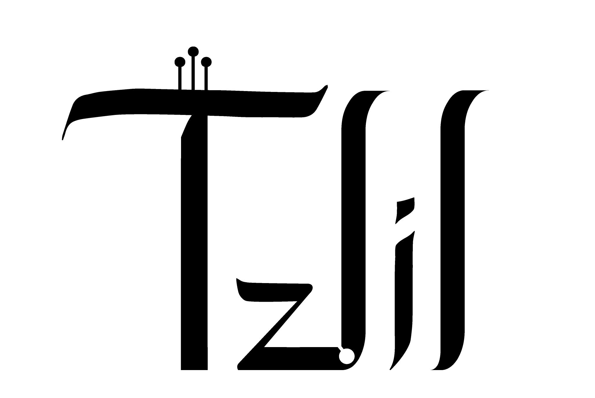 TZLIL (Tzlil Danin) - musician