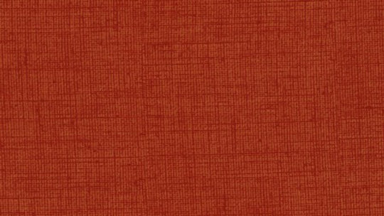 Fabric - Timeless Treasures Mix Basic - 7200 - Terracotta