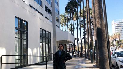 A Day in LA