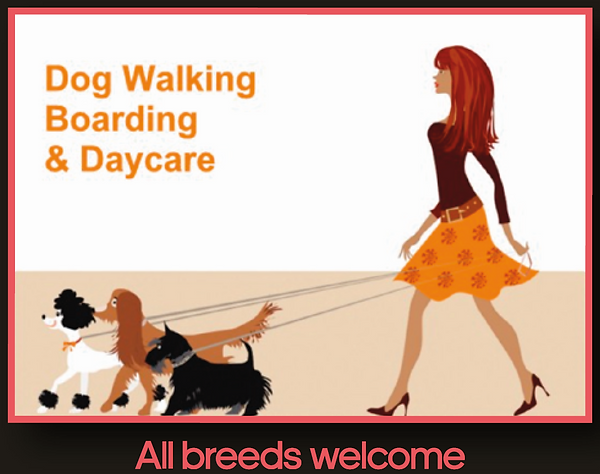 Liverpool dog walking