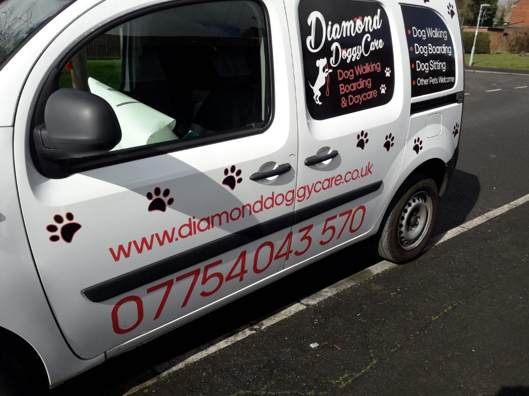 Diamond Doggycare