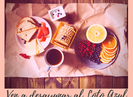 Ven a Desayunar al Loto Azul