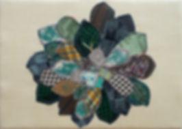 Echeveria setosa (ikebana style)_edited.