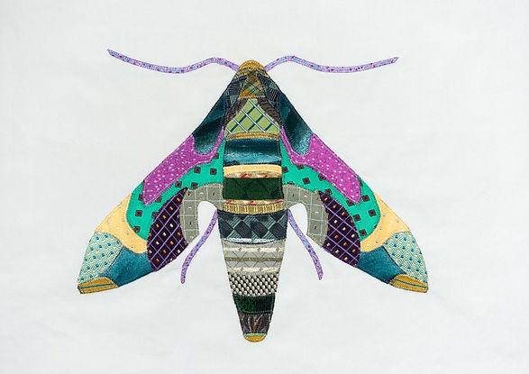 Oleander Hawkhead Moth.jpg