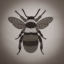 Sepia Bee (1 of 1).jpg