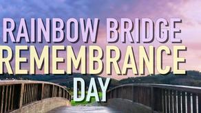 Rainbow Bridge Remembrances