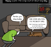 Noisy holidays don't have to scare your pet!