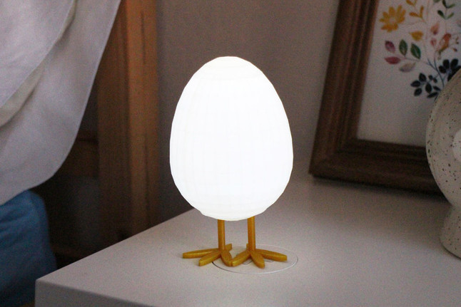 LED Egg Night Light